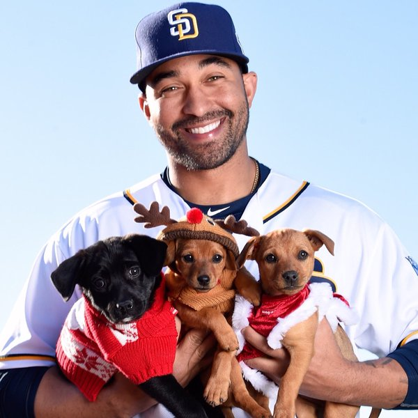 padres and puppies 91x fm